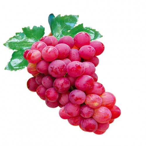 Red Grapes - 1 Kg